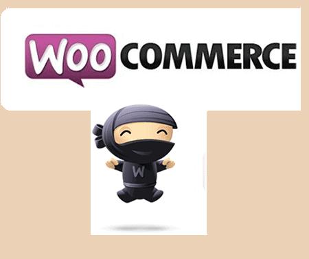 comercio electronico con woocommerce en valladolid